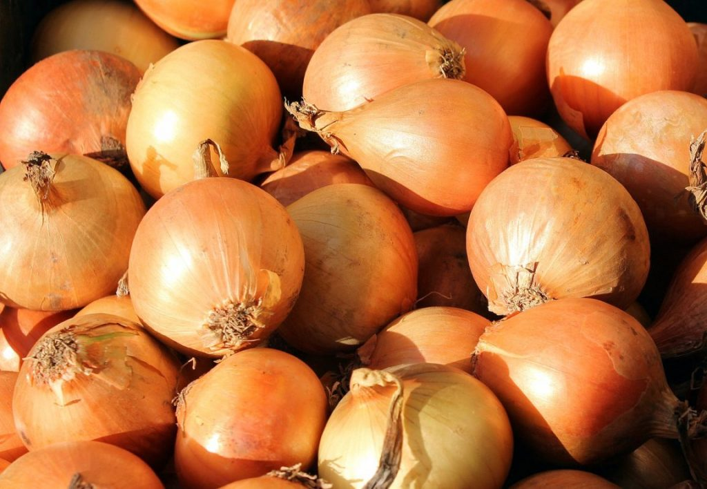 4 rodzaje cebuli i sposób ich wykorzystania w kuchni. Będziesz wiedzieć z czym je łączyć
