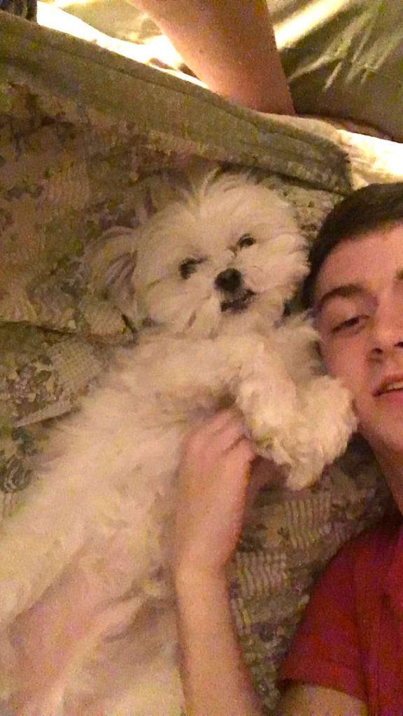 W czasie pobytu na wakacjach otrzymali nietypowy filmik z udziałem syna i ich psa