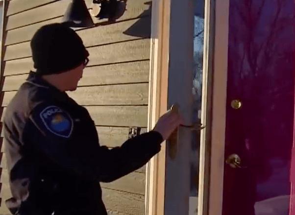 Policja została wysłana na interwencję. Dwa psy zadzwoniły po pomoc 16 razy w ciągu 30 minut