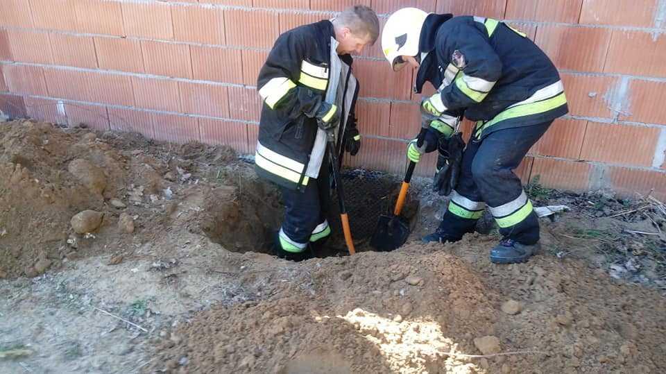 Strażacy z Tyńca przez 6 GODZIN ratowali kotka, który utknął w rurze. Niezwykła historia