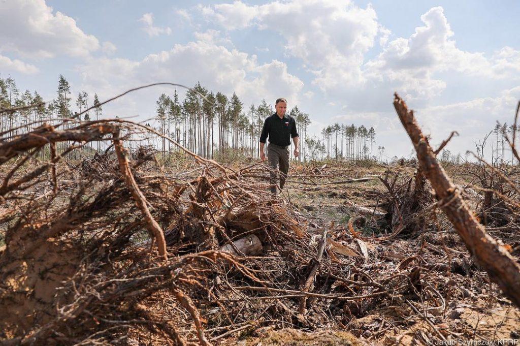Prezydent Andrzej Duda zasadził drzewa. Zachęcił do odbudowy lasów zniszczonych w 2017 roku