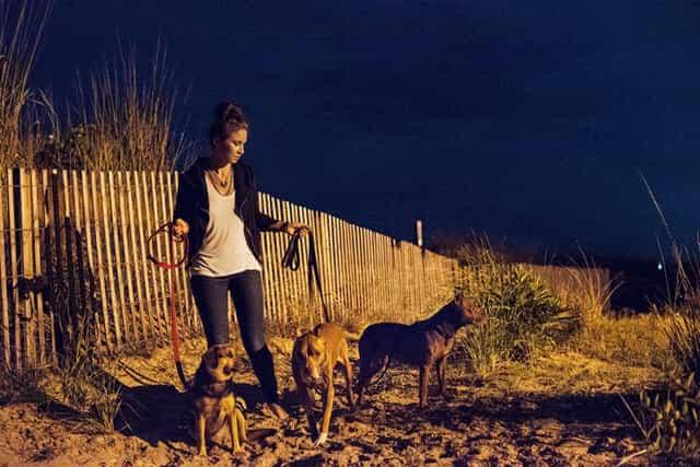 Rodzina zabrała śmiertelnie chorego psa w ostatnią podróż. Miesiąc po wakacjach zmarł