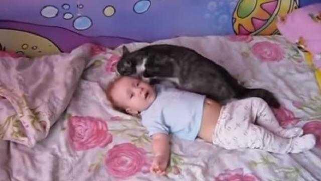 Dziecko leży na łóżku i płacze. Nagle na łóżko wskakuje kot. To wideo podbiło miliony serc