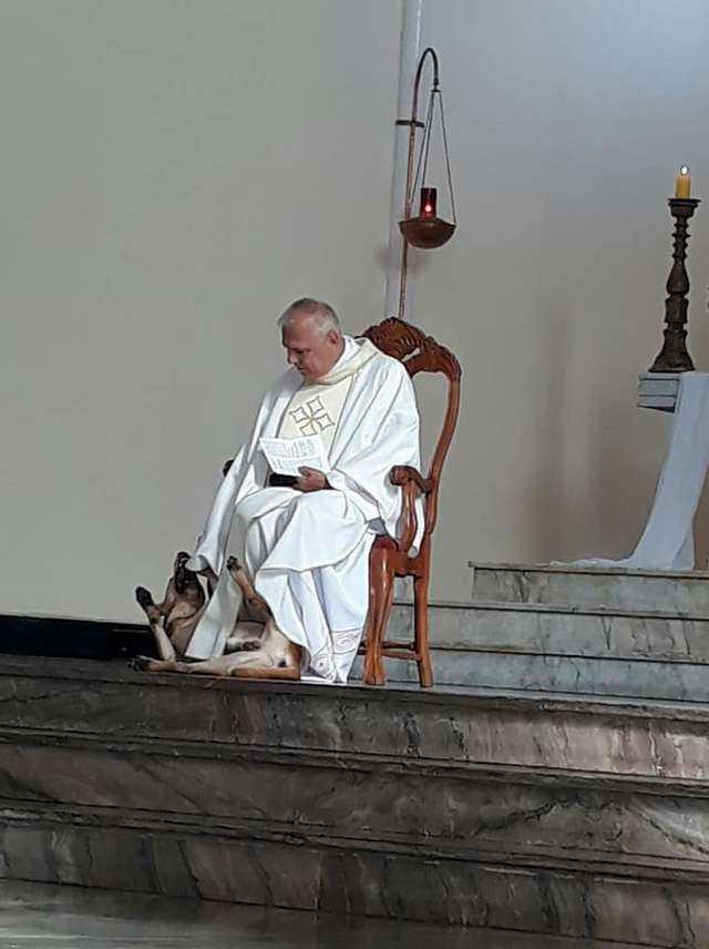 Ludzie z całego świata pokochali tego księdza. W czasie mszy zaczepiał go obcy pies