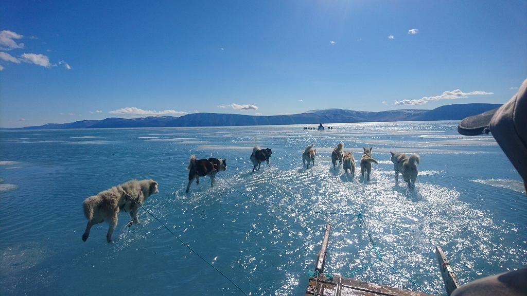 17 stopni na plusie na Grenlandii. Badacz sfotografował rekordowe topnienie pokrywy lodowej