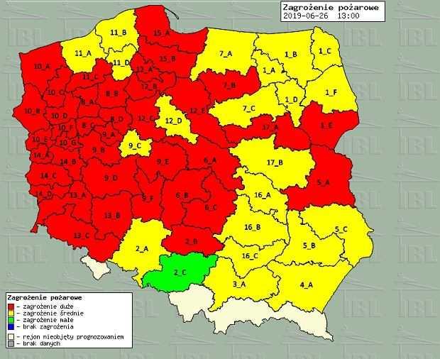 Ogromny pożar lasu na Mazowszu. Z płomieniami na 40 ha walczy prawie 100 strażaków