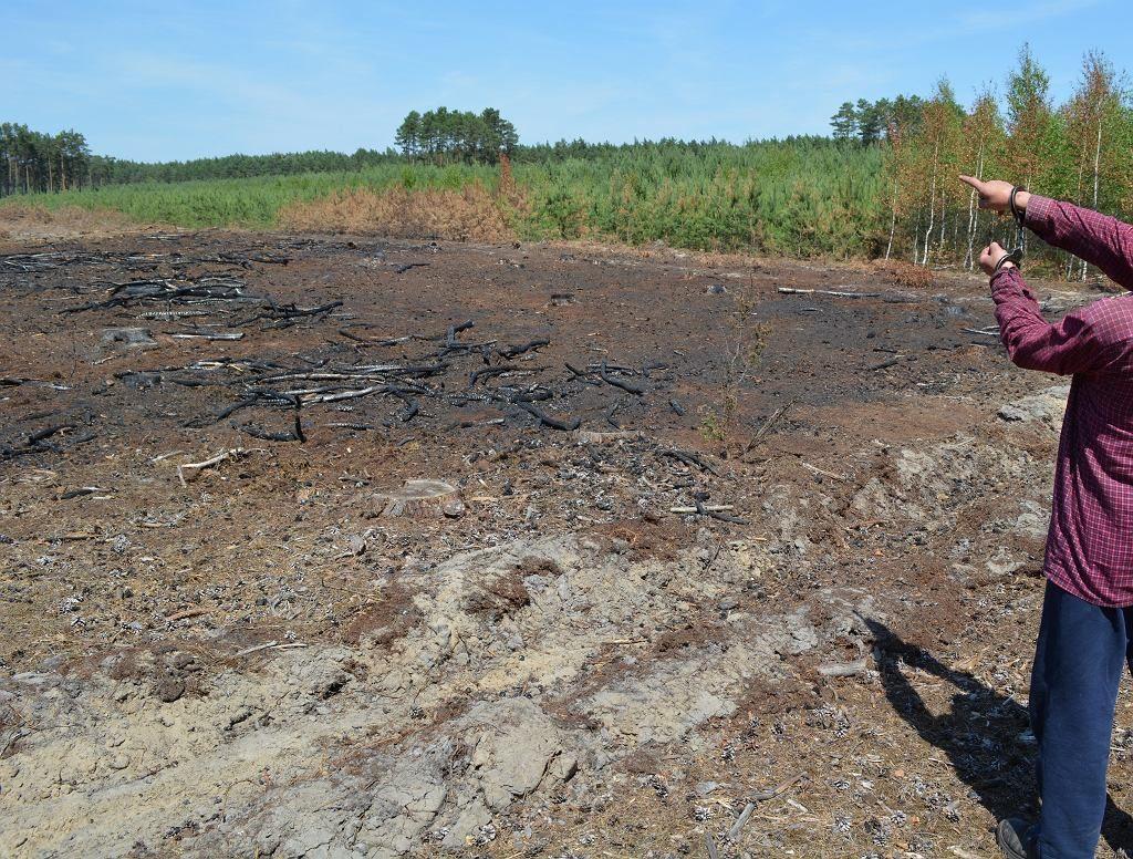 Szamotuły: Policja zatrzymała 41-letniego seryjnego podpalacza. Mógł spowodować 14 pożarów lasów