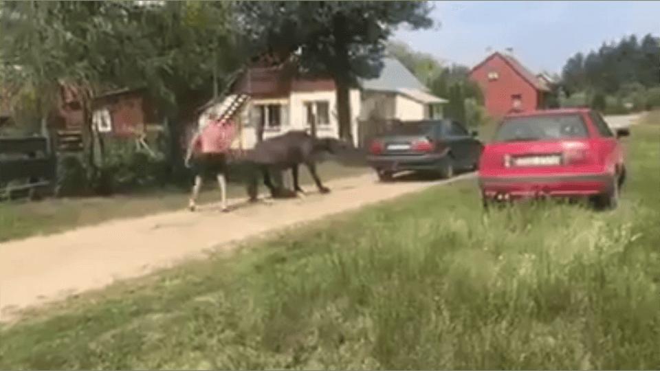 Jeden ciągnął autem, drugi bił. Do szokujących scen doszło przed kilkoma dniami w małej miejscowości na terenie gminy Giby