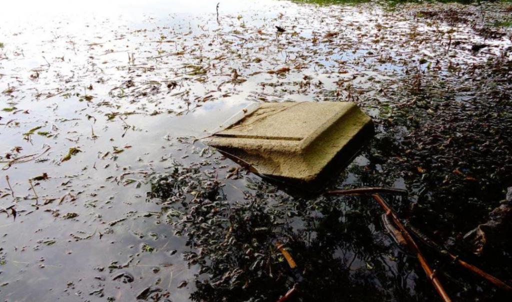 Wczasowicze wstrząśnięci. Nagle z popularnego polskiego jeziora zaczęły wyłaniać się nagrobki