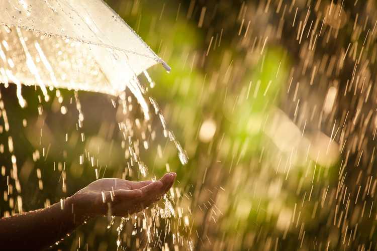 """IMGW ostrzega przed """"falą deszczu"""". Opady co najmniej do końca tygodnia"""
