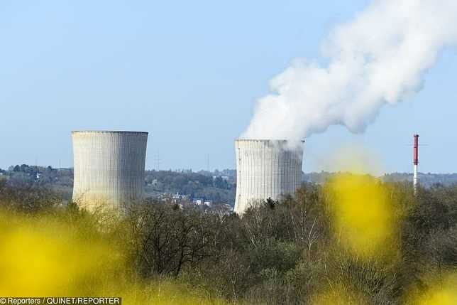 Niemcy. Rząd kupuje tabletki z jodem w obawie przez katastrofą atomową