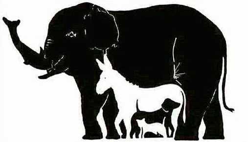 Większość ludzi na obrazku widzi 4 zwierzaki. W rzeczywistości jest ich znacznie więcej