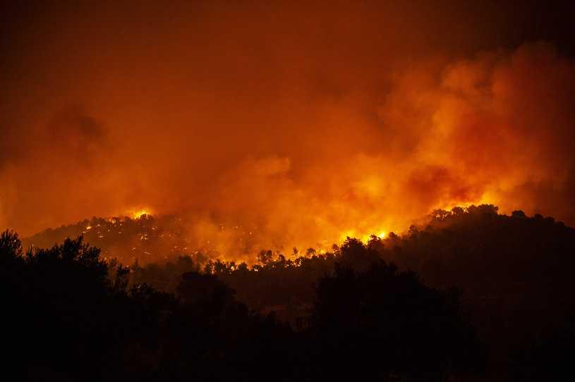 Pożar na greckiej wyspie Zakynthos. Ewakuacja turystów