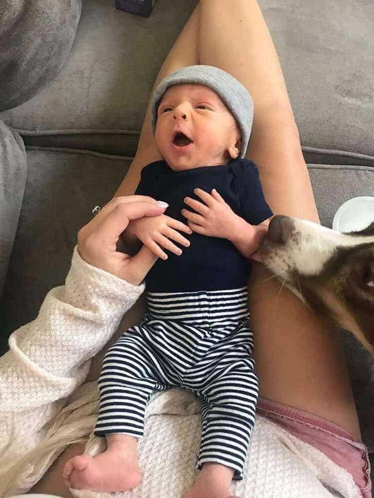 Ten pies i dziecko mają najsłodszy zwyczaj po przebudzeniu się