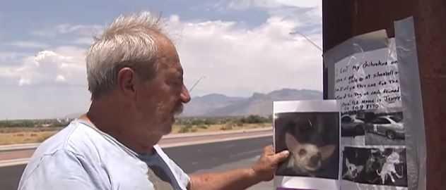Zdesperowany właściciel wyznaczył nagrodę za znalezienie psa – własny dom