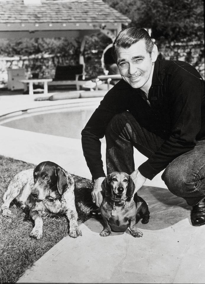 Wielki aktor Clark Gable przeżywał dramat. Gardził blichtrem, tęsknił za wsią