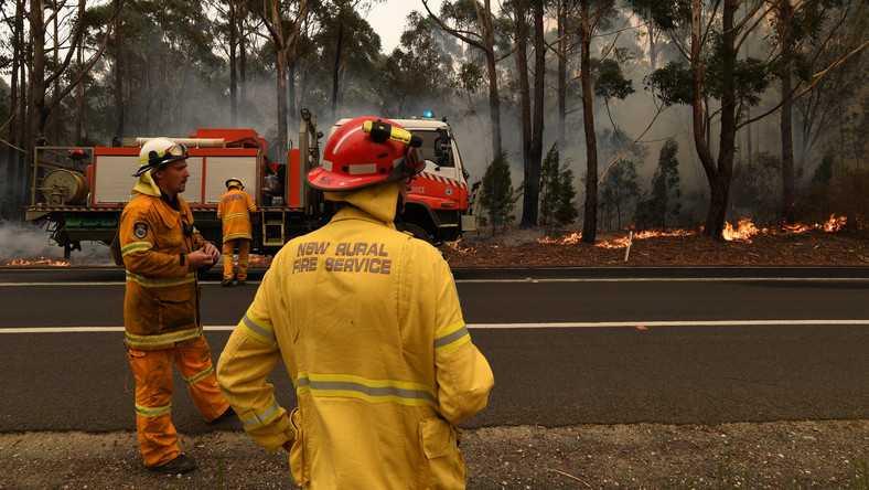 Zbiórka na rzecz pomocy strażakom w Australii. 13 mln dolarów w dwa dni
