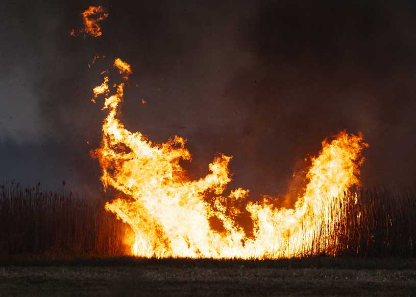 Biebrzański Park Narodowy. Pożar nie ustępuje, wzmożone działania strażaków