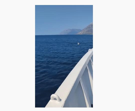 3-latka znaleziona na środku morza. Dziecko dryfowało na dmuchanym jednorożcu