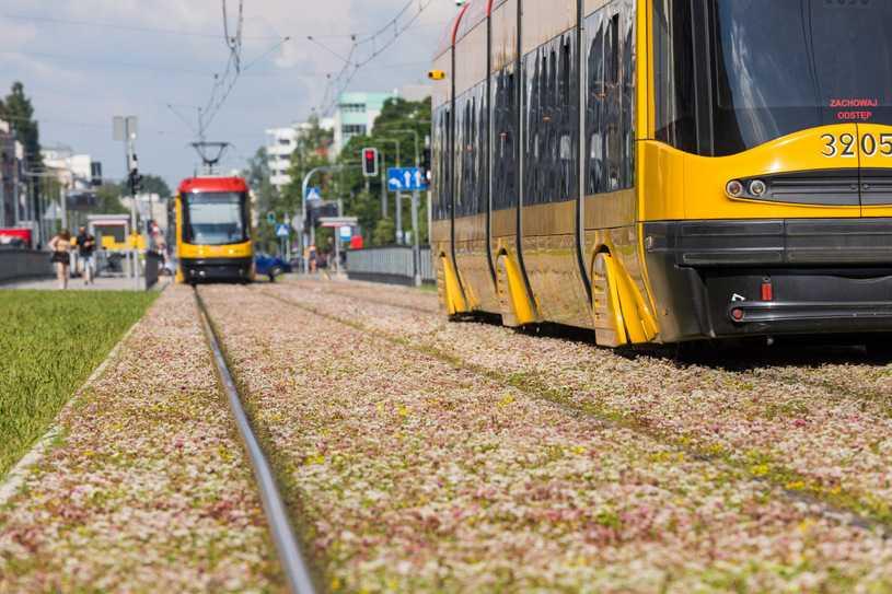 Warszawa: Motornicza w tramwaju zwróciła uwagę na brak maseczek. Została pobita
