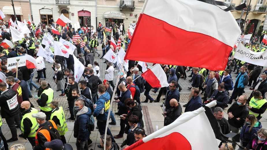 """""""Dziś stanie cała Polska"""". W kraju odbędą się protesty przeciwko """"piątce dla zwierząt"""""""