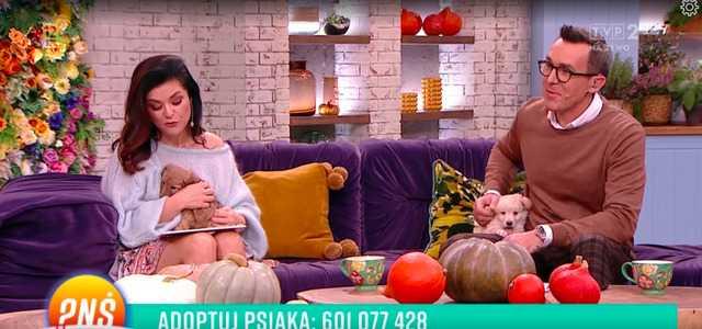 Oddał mocz na Katarzynę Cichopek. Cała Polska zobaczyła, co stało się na wizji TVP