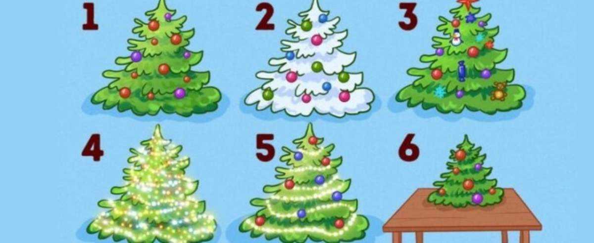Która z choinek przypomina twoją? Sposób przyozdobienia drzewka zdradzi całą prawdę na twój temat