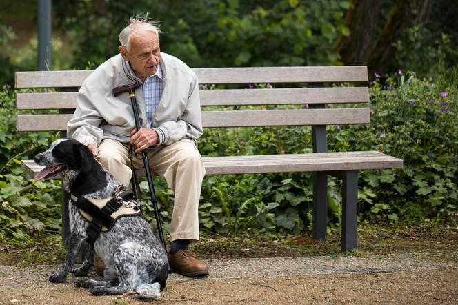 Seniorze, sprawdź, czy przysługuje Ci 500 plus. Ubodzy emeryci dostaną cały zasiłek