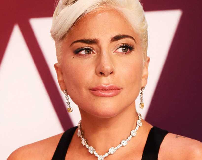 Lady Gaga przeżywa dramatyczne chwile. Porwano jej psy, a ich opiekun został postrzelony