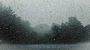 Pogoda na dziś - czwartek, 11 marca. Spodziewany wzrost temperatury, deszcz i silny wiatr