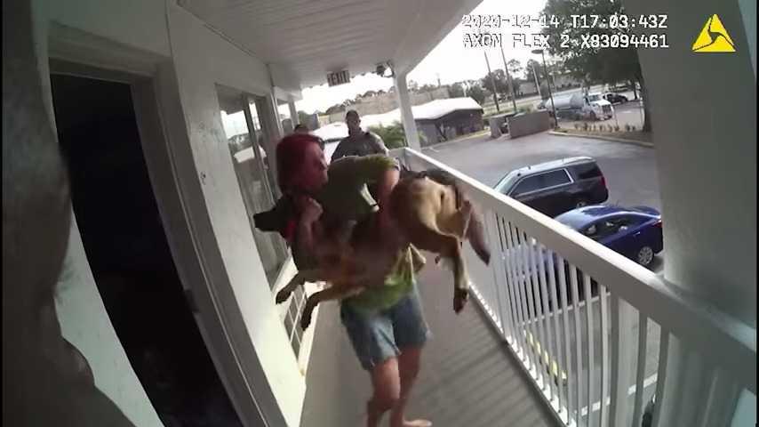 """""""Cudowny"""" pies, który przeżył wyrzucenie z balkonu, znajduje nowy dom, jako towarzysz dla weterana"""