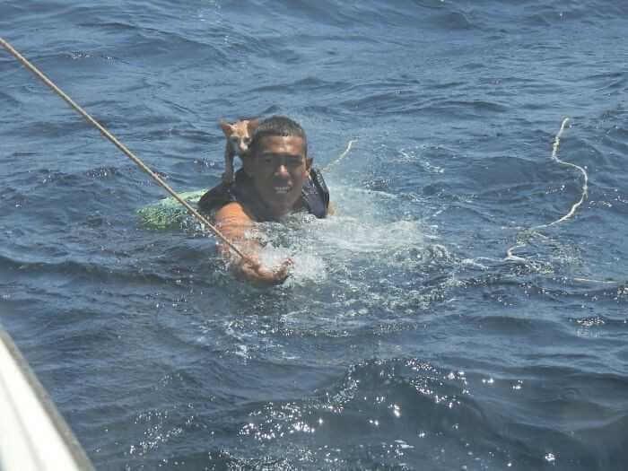 Zobaczył uwięzione 4 koty na tonącym statku. Bez zastanowienia rzucił się na pomoc
