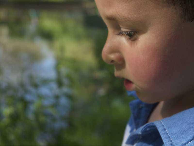 3-letni chłopiec pamięta swoje poprzednie życie. Wskazał mężczyznę, który go zabił, a nawet miejsce zbrodni