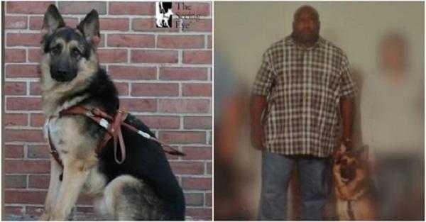 Ukradli niewidomemu psa przewodnika. Po apelu mediów ruszyło ich sumienie.