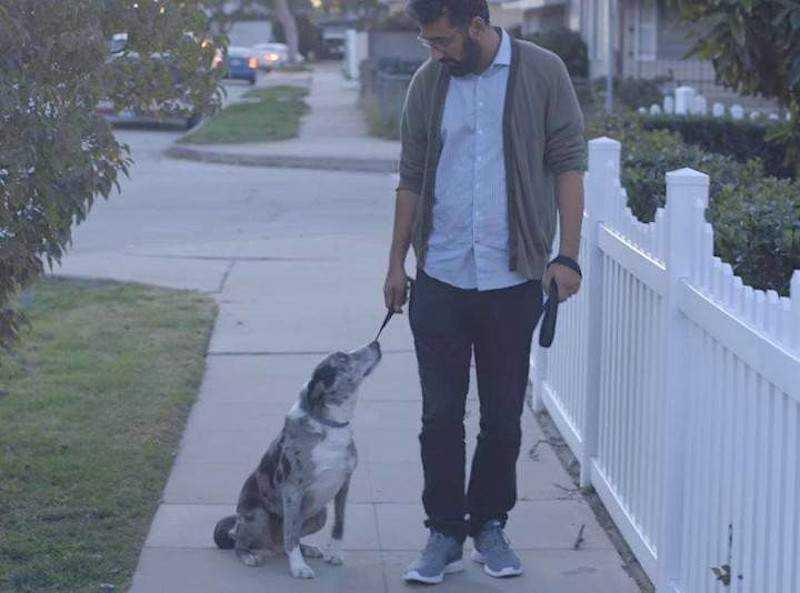 Mężczyzna adoptuje starego psa. Pewnego dnia podczas spaceru, zwierzak zatrzymuje się i chce mu coś przekazać
