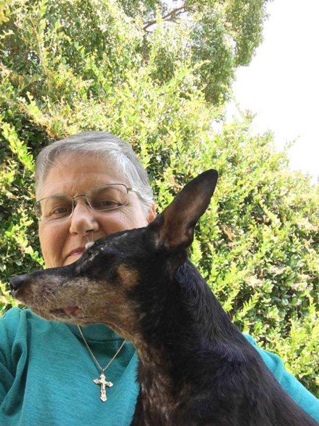 Przyszła do schroniska i poprosiła o najstarszego i najbrzydszego psa. Pracownicy byli podejrzliwi…