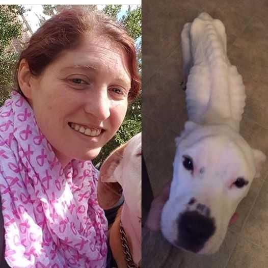 Opiekunka nie chciała oddać kobiecie jej psa. Powód okazał się szokujący i okrutny...