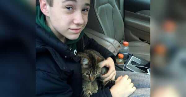 Wyrzucili małego kotka w czasie jazdy samochodem wraz z innymi śmieciami.