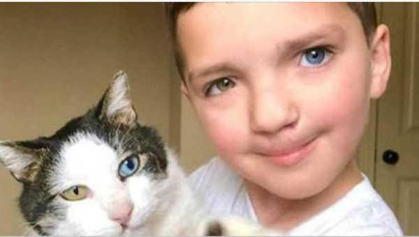 7-latek wstydził się swojego wyglądu. Wtedy dostał w prezencie wyjątkowego kota