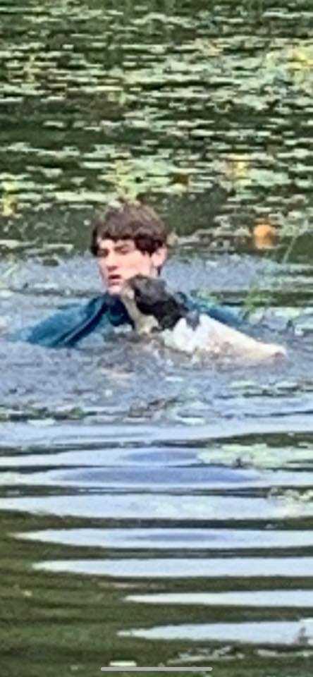 Nastolatek wskakuje do jeziora, aby uratować psa nieznajomej przed utonięciem