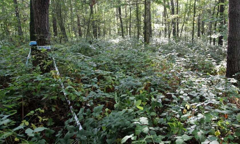 Ciała dwóch 13-latek znalezione w lesie pod Warszawą!