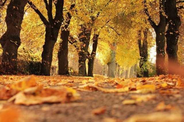 Pogoda na październik. Synoptycy już wiedzą - czeka nas złota jesień czy gwałtowne ochłodzenie?