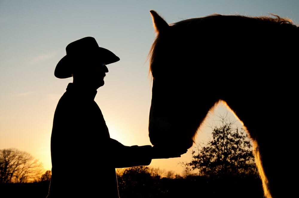 Koń na pogrzebie po raz ostatni żegna się z właścicielem, który nie chciał z niego zrezygnować