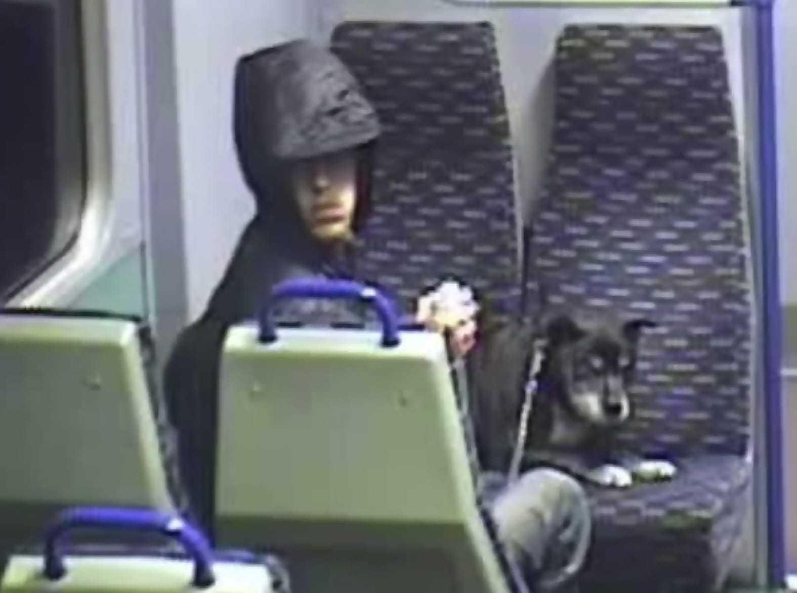 Mężczyzna wsiadł do pociągu i zaczął kopać i dusić psa. To co stało się później powoduje, że płaczę!